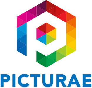 picturae-bv